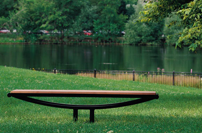 Picture of Bench in Park