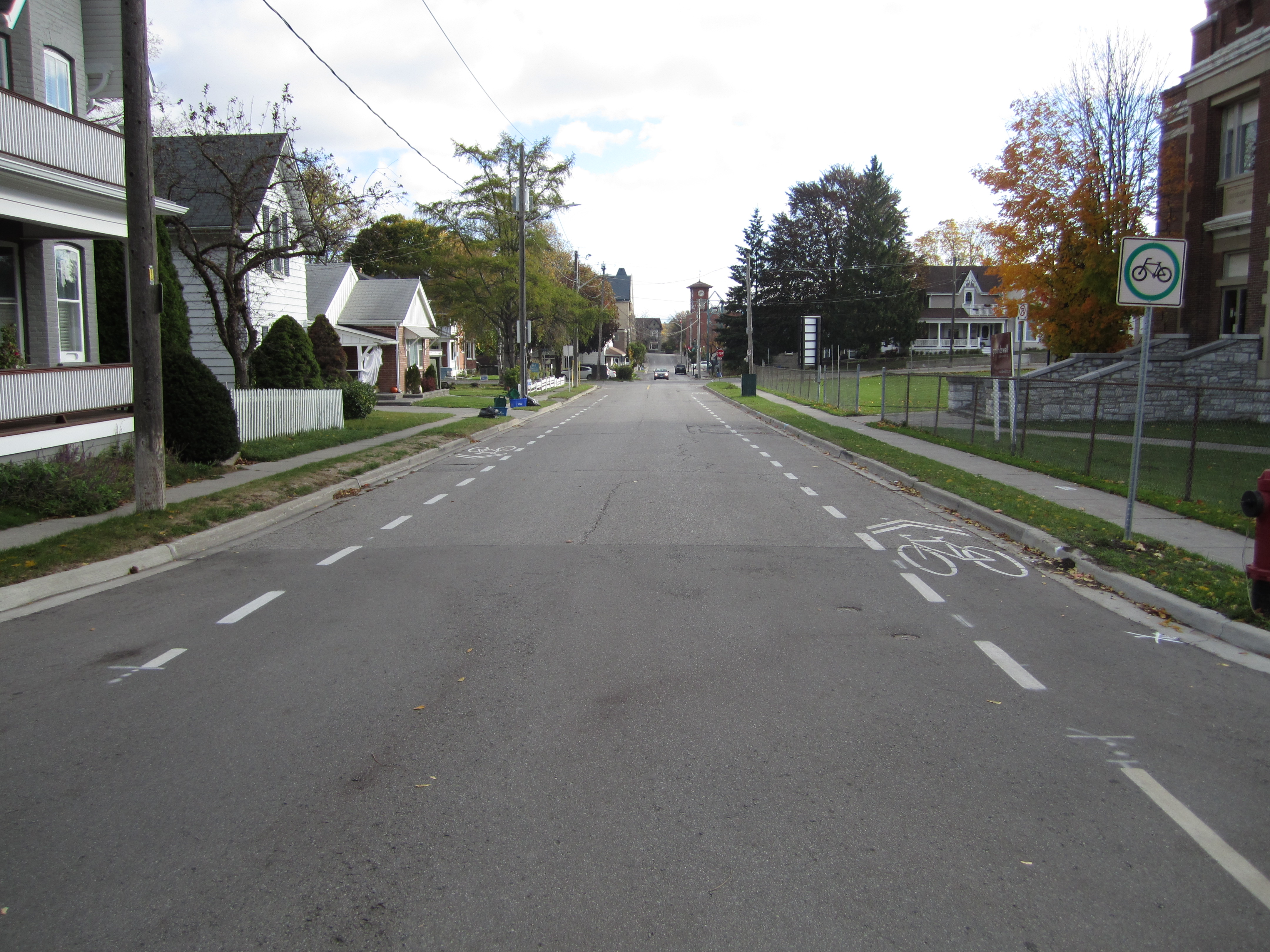 A picture of advisory bike lanes on Park Avenue looking Eastbound