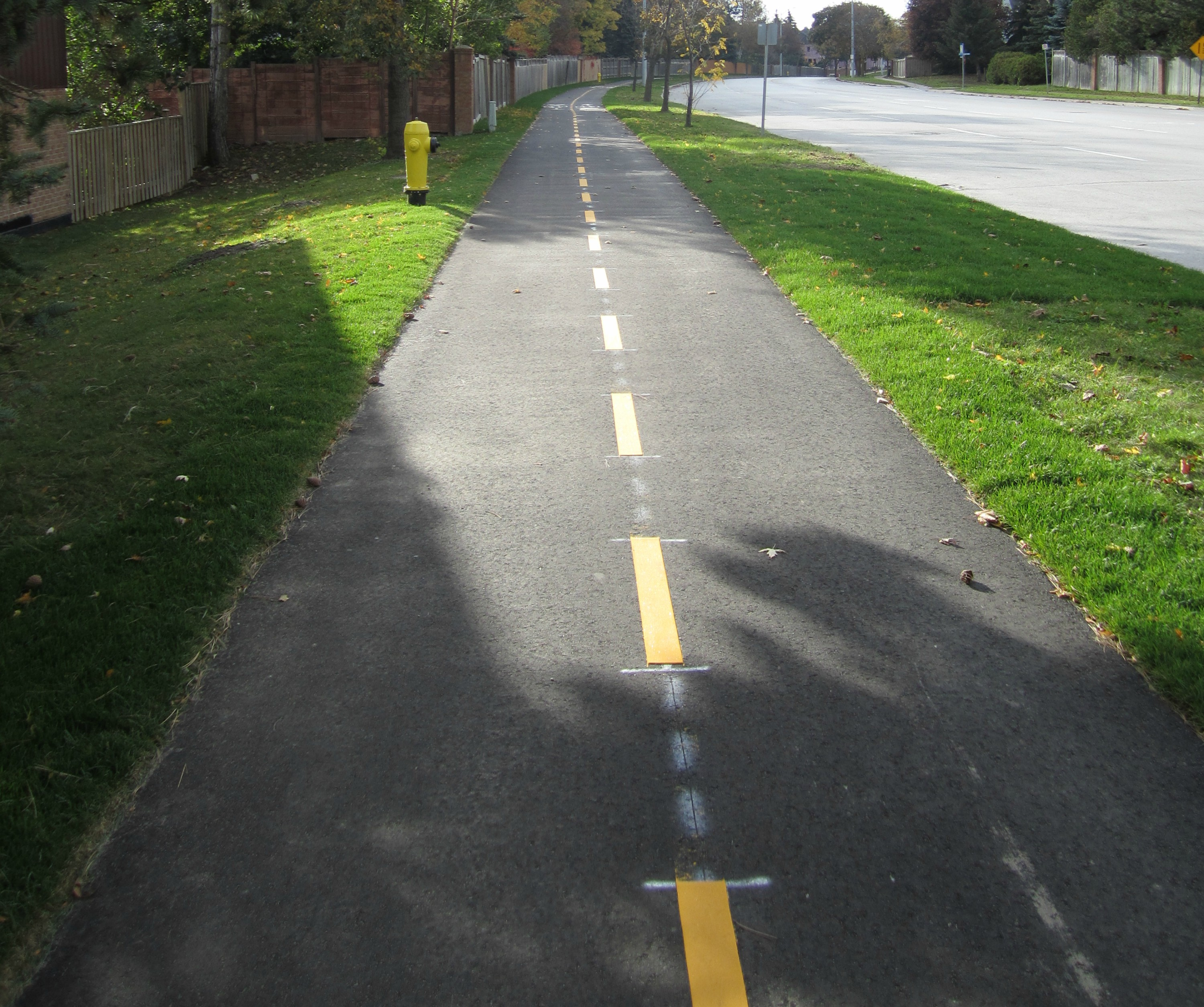 a picture of a multi use path on eagle street west looking southbound