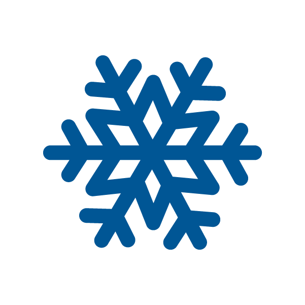 Snow Flake Graphic