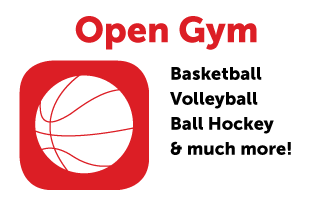 Open Gym: Basketball, Volleyball, Ball Hockey and much more