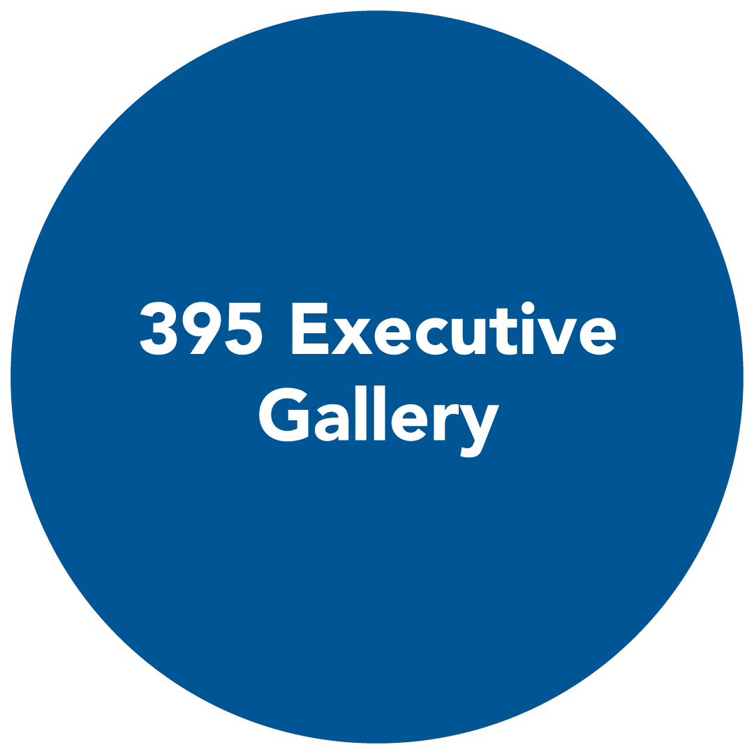 button redirects to 395 executive gallery page