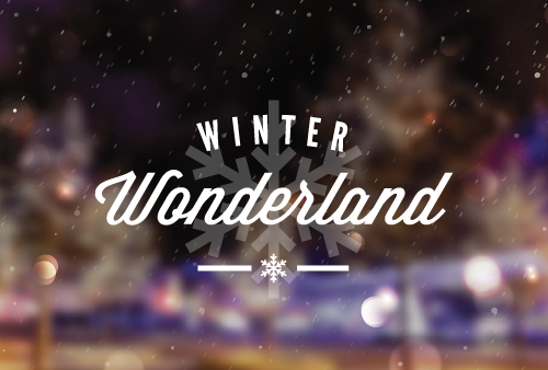 winter wonderladn